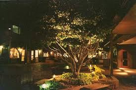 Landscape Up Lights Landscape Lighting Concepts Photos