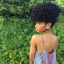 easy hairstyles for 4c hair essence com