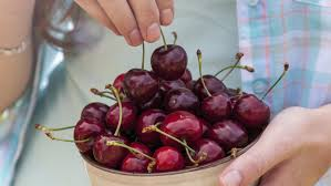 what do cherries symbolize reference com