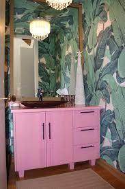 Fish Bathroom Accessories Bathroom Design Awesome Bathrooms Hanging Bathroom Plants