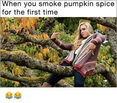 Pumpkin Spice Meme - when you smoke pumpkin spice for the first time meme on me me
