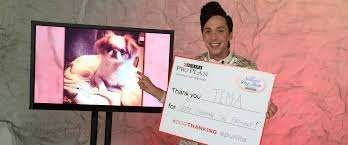 who won the dog show on thanksgiving purina launches dogthanking initiative in celebration of the
