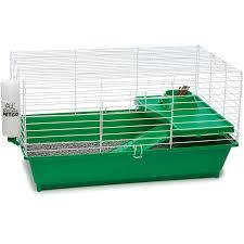 petco guinea pig starter kit my pet dreamboard pinterest