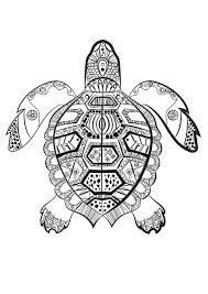 la tortue marine à colorier du dimanche mandala pinterest