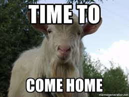 Billy Goat Meme - time to come home billy goat meme generator