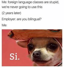 Si Memes - me foreign language classes are stupid we re never going to use this