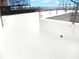 Apoc Elastomeric Roof Coating by Roof Walls Roofs Jnl Stunning Silicone Roof Coating Mesmerize