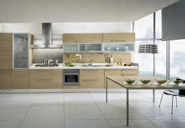 glorious modern kitchen cabinets california tags modern cabinets