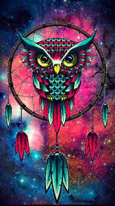 white owl 2 wallpapers owl u2026 pinteres u2026