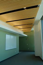Outdoor Wood Ceiling Planks by Bamboo Linear Ceiling Panels Home Ideas Designs