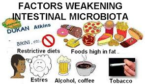 bad food for intestinal flora