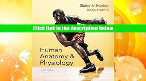 Human Anatomy And Physiology Marieb Hoehn Audiobook Human Anatomy Physiology Marieb Human Anatomy