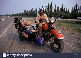 Alaska travellers images Dog on a motorcycle stock photos dog on a motorcycle stock jpg