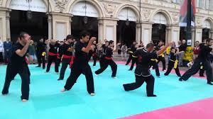 palazzetto le cupole torino hung gar kung fu torino 2014 scuola hga sifu franco gennari