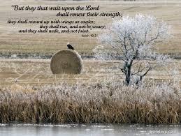 25 encouraging scripture verses exhausted lynn