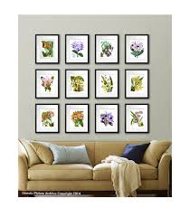 Hanging Prints Orchid Plant Set Of 12 Wall Art Tropical Decor Botanical