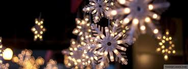 snowflake lights christmas snowflake lights cover trendycovers