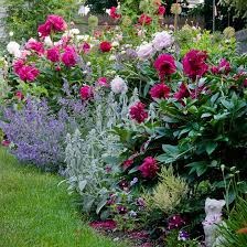 Better Homes And Gardens Summer - cottage style landscape design extreme weather shrub and foundation