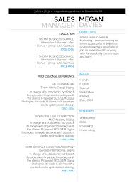 Strategy Resume Professional Resume Sample Compassionate Resume Mycvfactory