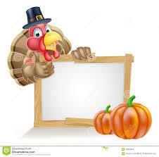 big bird thanksgiving cartoon pilgrim turkey with a signboard royalty free stock photos image