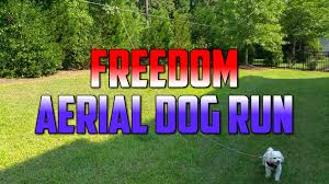 freedom aerial dog run cable review setup and installation