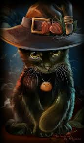 Black Cat Halloween Crafts 981 Best Kamaris U0027 Cats Images On Pinterest Cats Animals And