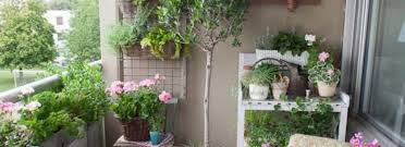 Ideas For Balcony Garden 50 Awesome Small Balcony Garden Ideas That Must You Try Decomg