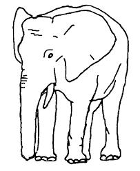 pictures elephants colour coloring