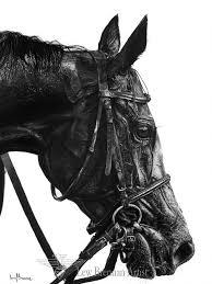 horse drawings art charcoal