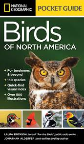 Backyard Birding Magazine Two Books For New And Young Birdwatchers Birdwatching