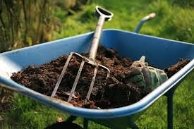 steps for preparing healthy soil for growing vegetables