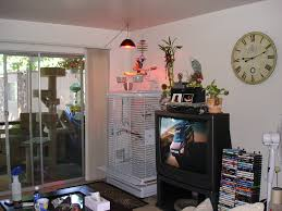 file living room pet parrot cage 8a jpg wikimedia commons