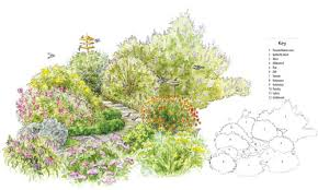 hummingbird garden layout alices garden intended for butterfly