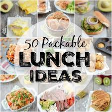 best 25 cold lunch box ideas for adults ideas on easy