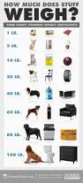 how much does stuff weigh infographic education insights