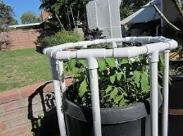 how to use your frost shade cover to increase growth for your