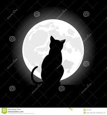 picture of halloween cats halloween night with black cat royalty free stock photo image
