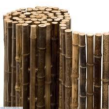 Bambus Garten Design Ideen Schönes Bambus Sichtschutz Montage Sichtschutz Aus Bambus