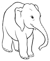 smart elephant coloring pages elephant coloring kids