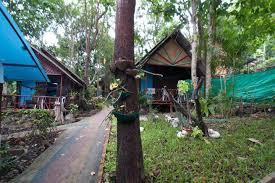 rapala rock wood resort railay krabi bungalows for rent in