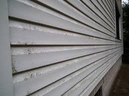 learn what causes mold on vinyl siding to keep the outside of your
