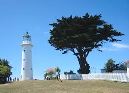 file tiritri matangi lighthouse and macrocarpa tree jpg