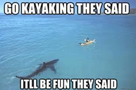 Shark Week Meme - best shark memes popsugar tech