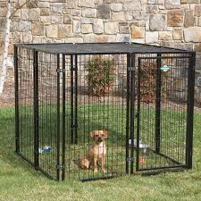 Outdoor Kennel Ideas by Dog Kennels Hayneedle