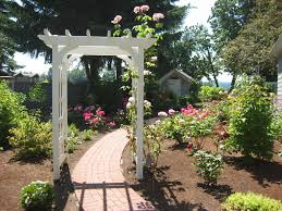 rose garden designs for small yard aesthetic and wonderful rose