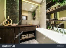 eco modern furniture modern bathroom decorated eco style wooden stock photo 250254496
