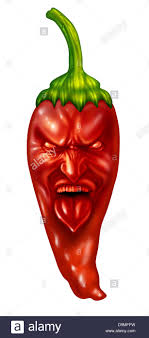 expression cuisine pepper and spicy flavor food symbol with a stock