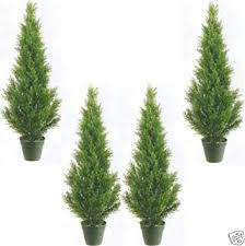Topiary Trees Artificial Cheap - cheap artificial plants and trees indoor find artificial plants