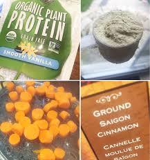 garden of life organic plant protein shake carrot cake ish