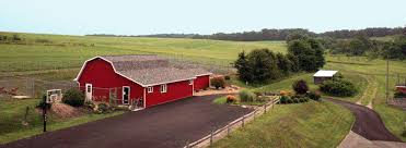 Red Barn Kennel Barnyard Kennels Dog U0026 Cat Boarding And Grooming Facility